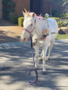 unicorn at birthday party